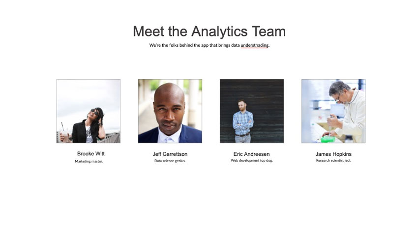 Meet the analytics team