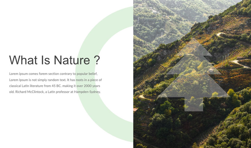 Slides template for nature
