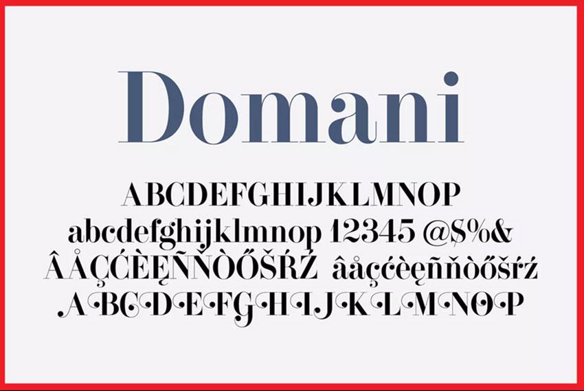 Domani serif font