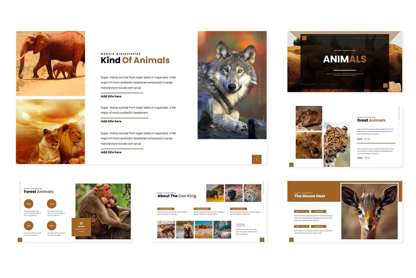 Intro animal Google Slides theme