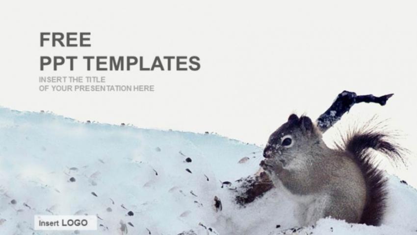 Winter scene PowerPoint templates