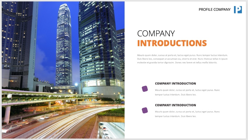 Photo company profile PPT