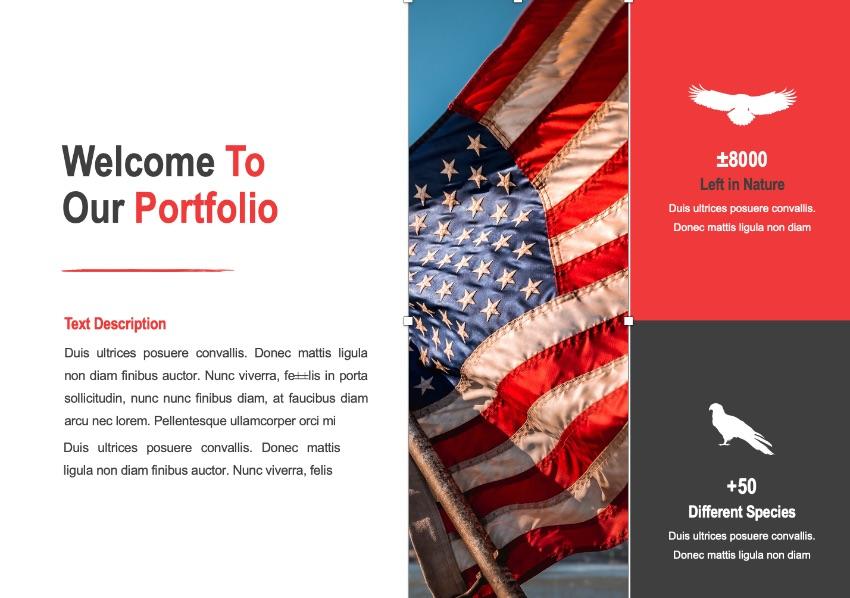 Photo Patriotic PPT template