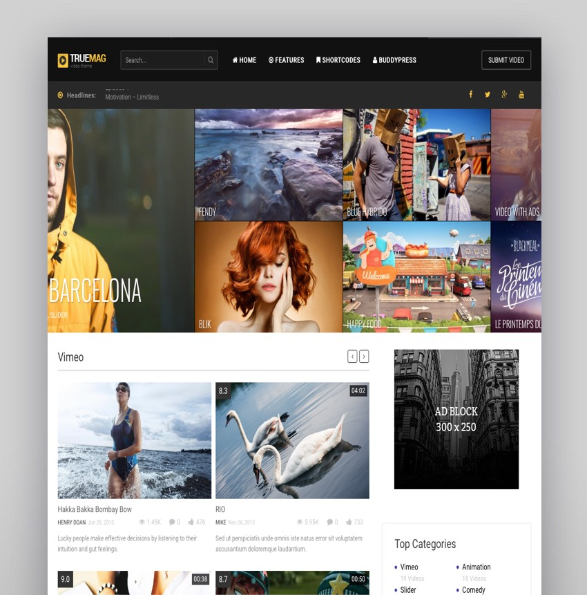 True Mag - WordPress Theme for Video and Magazine