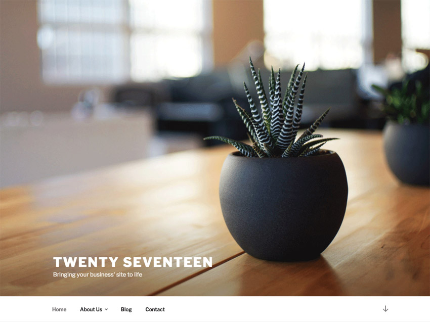 The default Twenty Seventeen Theme