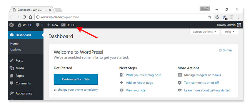 Accessing WP-CLI via WordPress