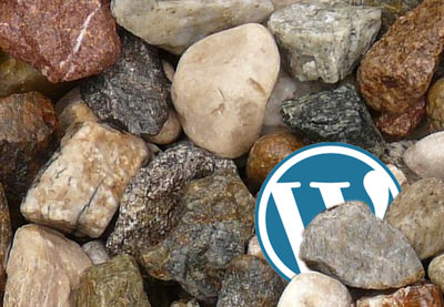 Preview for Eight Hidden Gems in the WordPress Function Reference