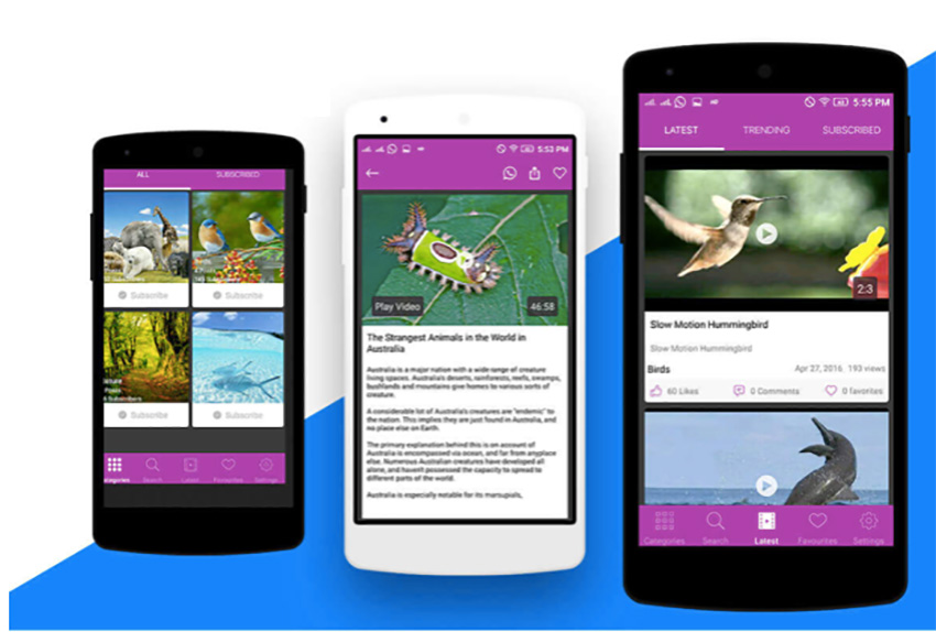 10 Best Multi-Purpose Android App Templates