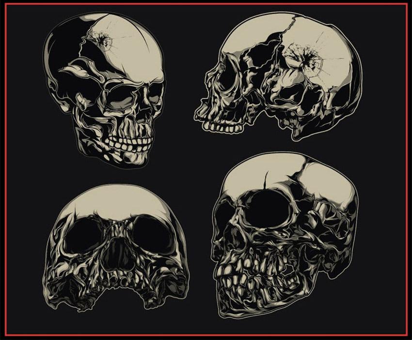 Vector Skull Stock