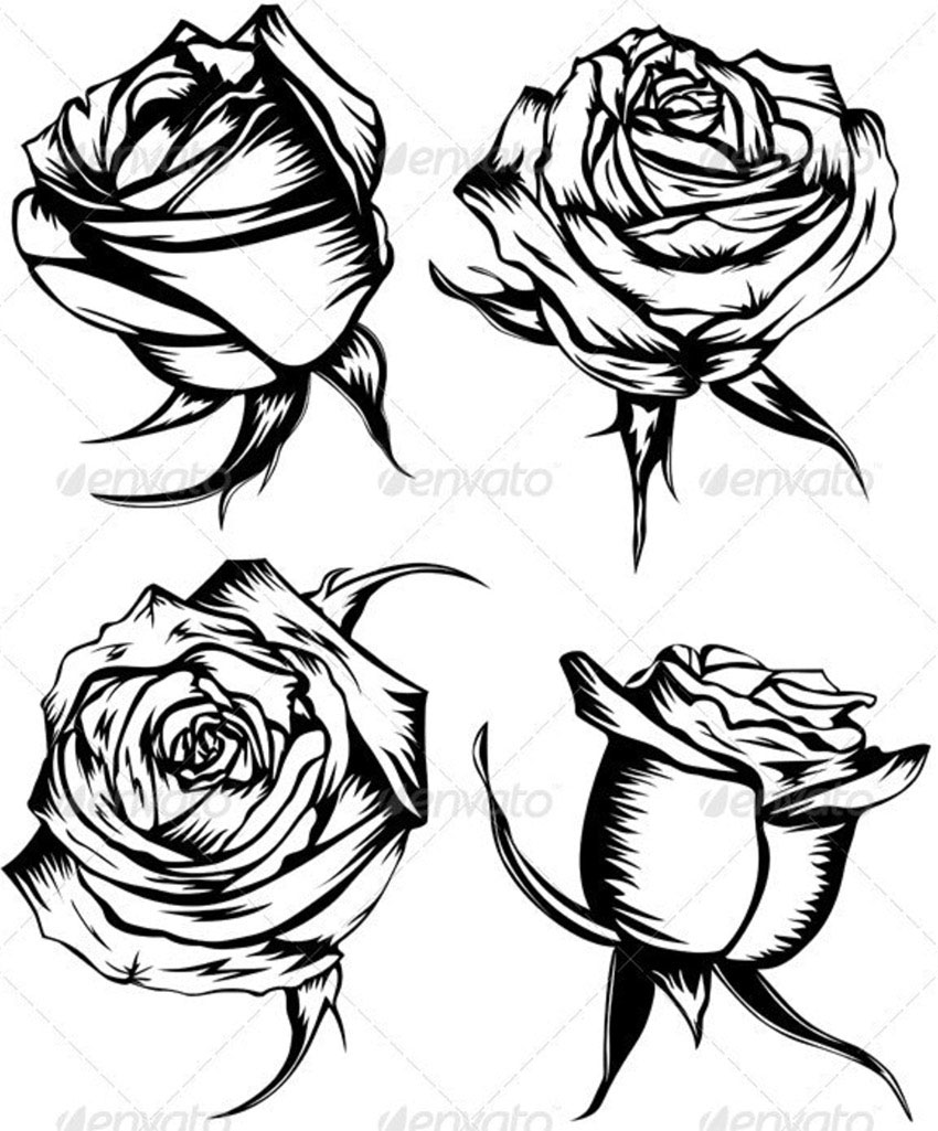 Four Black and White Roses