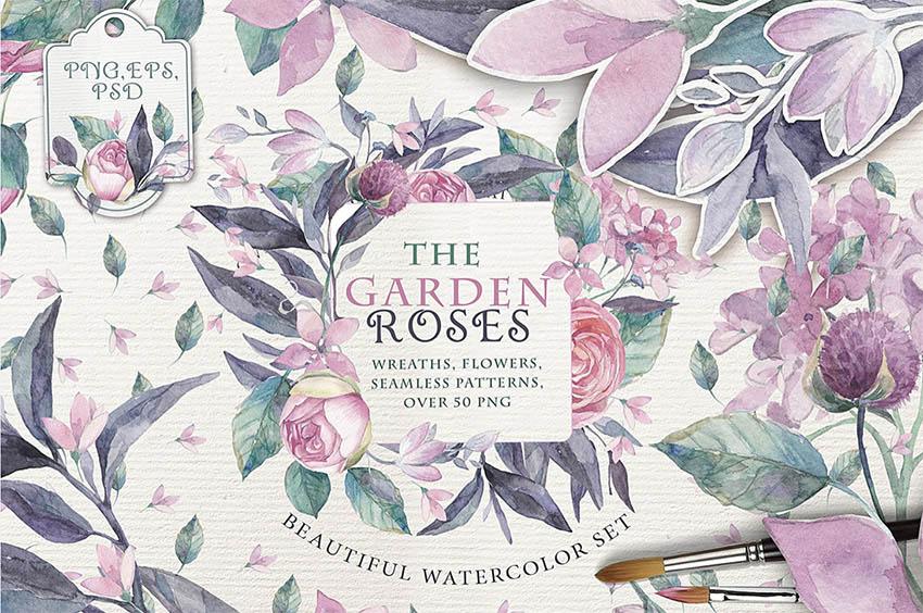 The Garden Roses