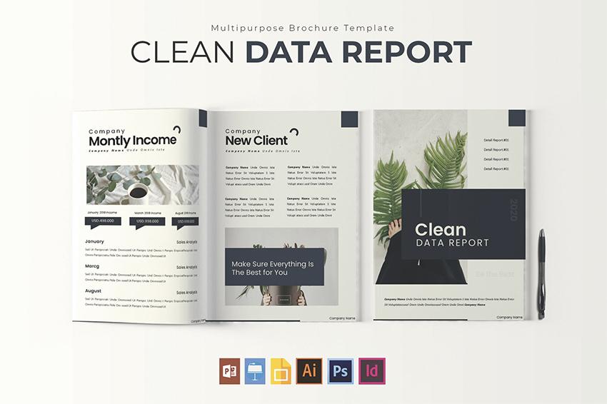 Clean Data  Report Template