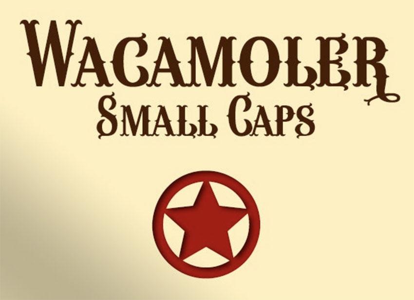 Wacamoler Small Caps