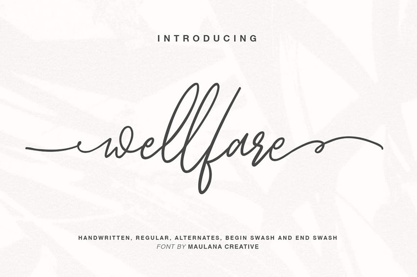Wellfare Script Font with Swashes