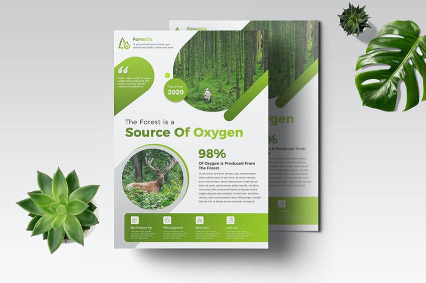 EcoGreen Photoshop Flyer Template
