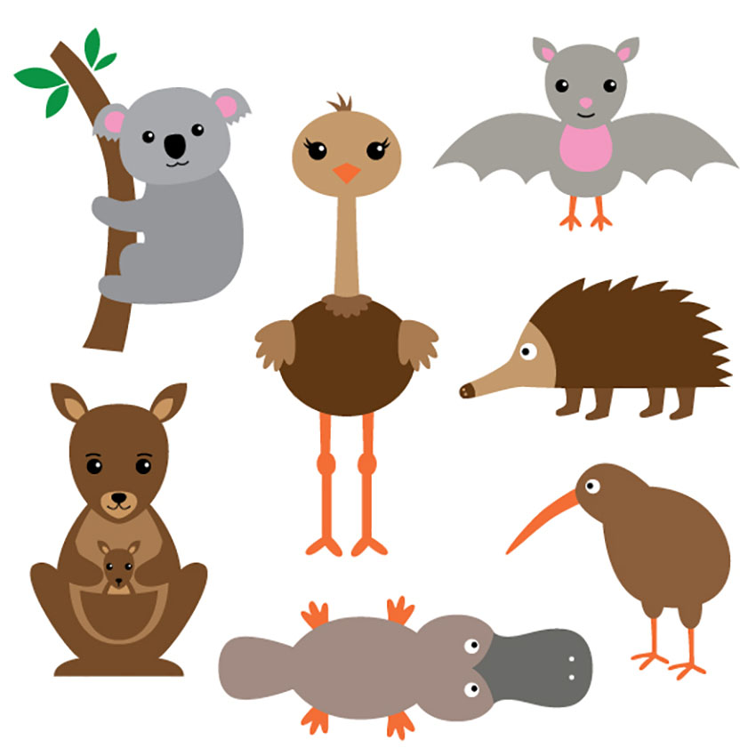 Australian Animal Illustrations Set