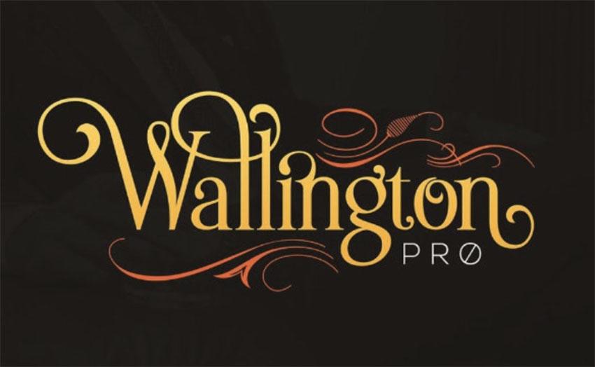 Wallington Pro - Art Nouveau Font Styles