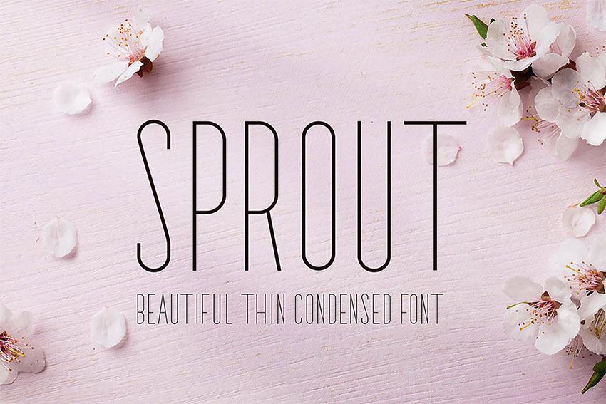 Sprout - Sans Serif