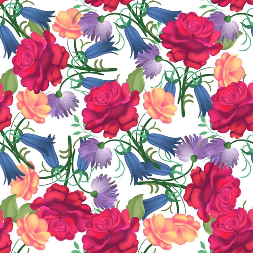 Rose Botanical Illustration