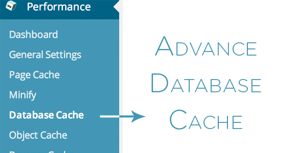 Advance Database Cache