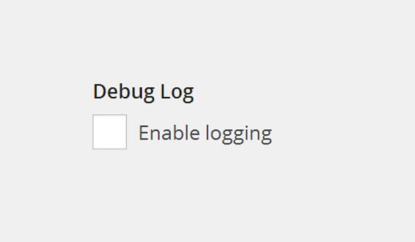 Debug Log