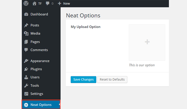 The upload option in the Neat Options
