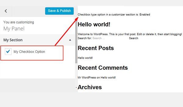 Previewing the checkbox in the Customizer