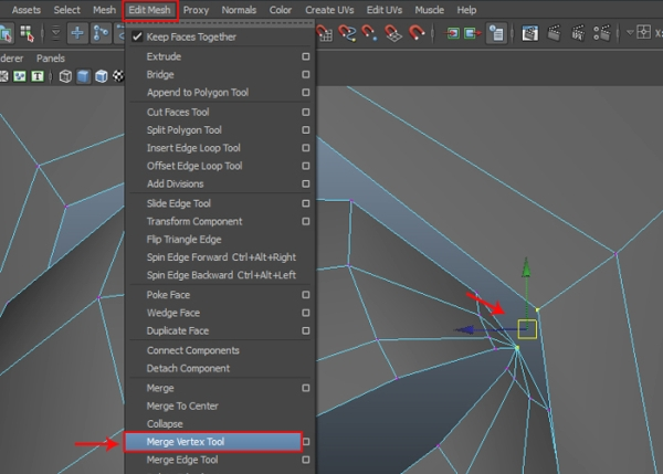 Merging the Vertices