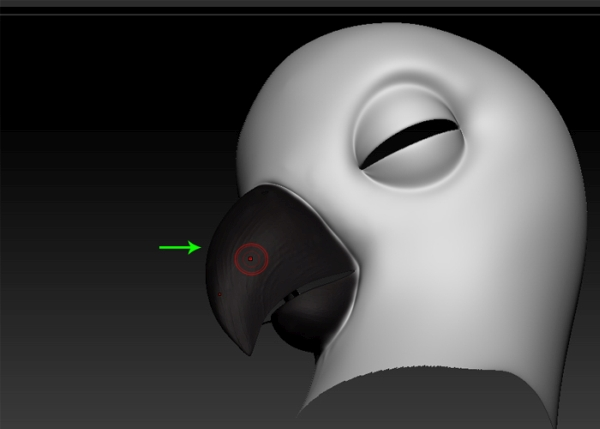 Paint the beak mesh