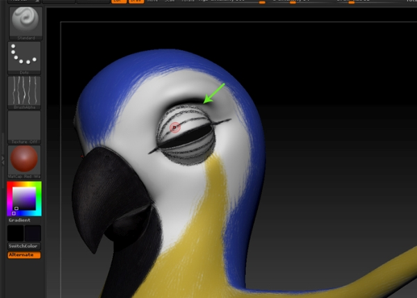 Paint the eye lid