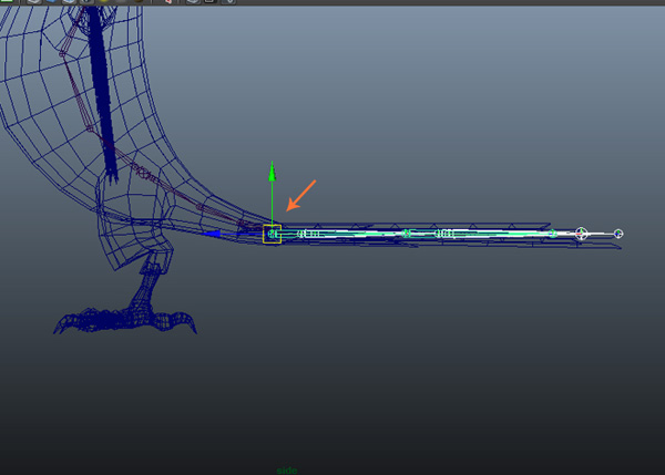 Place the joints inside the tail mesh