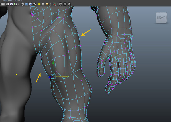 Adjust the vertices of thigh