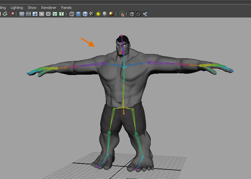 Body rigging done