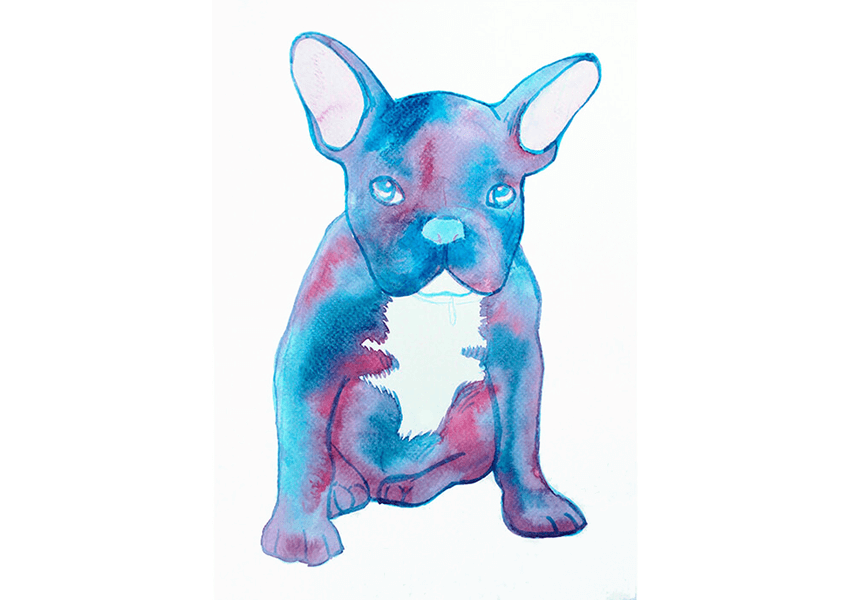 How to Create a Galaxy Pet Portrait Using Watercolour Paint