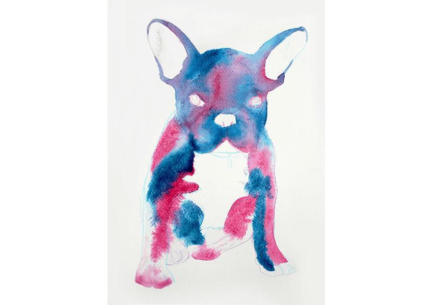 frenchie bulldog galaxy art drawing