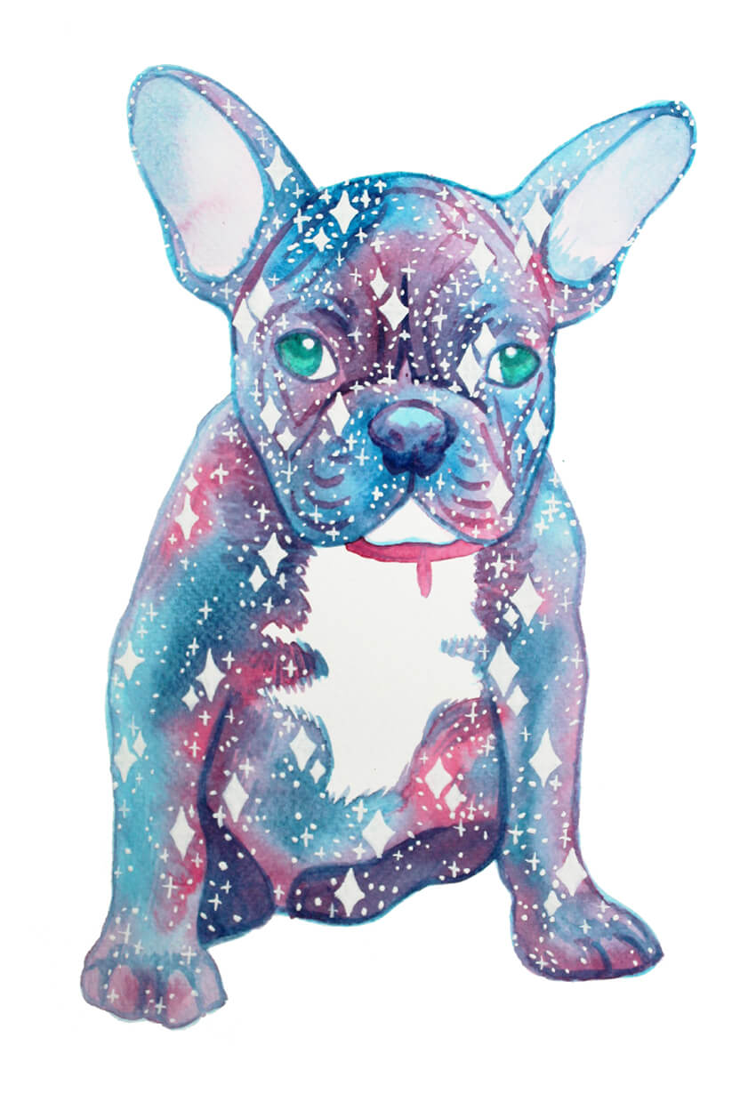 galaxy dog frenchie watercolour painting