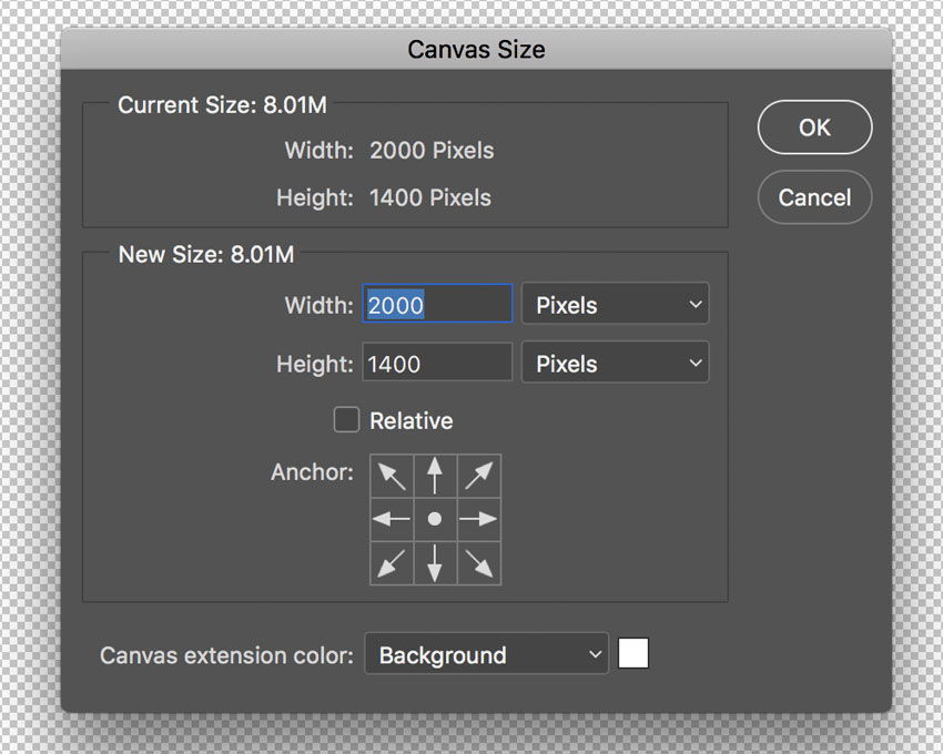 Canvas size panel