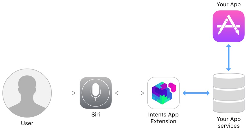 Siri Interaction Workflow