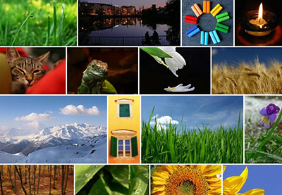 How to Create a WordPress Gallery Using the Justified Image Grid...