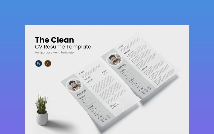 Clean Resume CV Resume