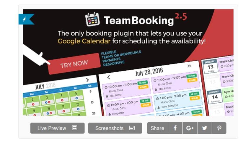 Team Booking WordPress Booking System