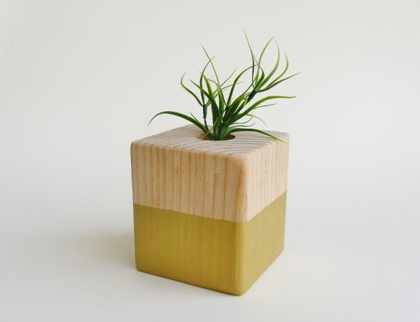 how to make a wooden air plant holder