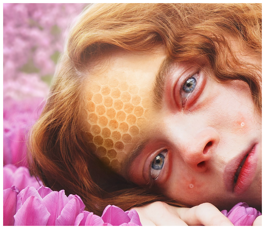blend honeycomb