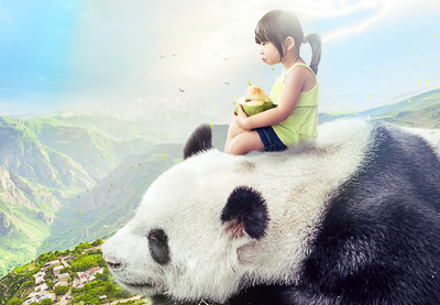 How to Create a Giant Panda Photo Manipulation in Affinity Photo