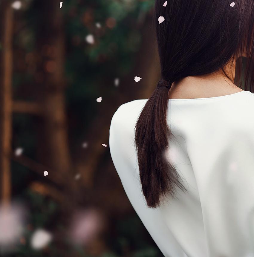 paint and blur foreground sakura petals falling