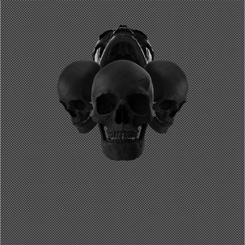 heavy metal album art skulls plus contrast