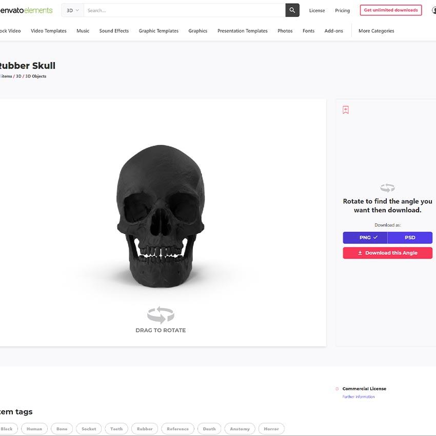 skull 3d asset
