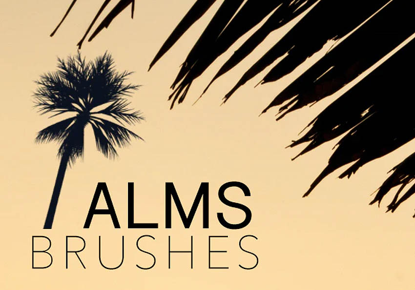 Palm Brushes