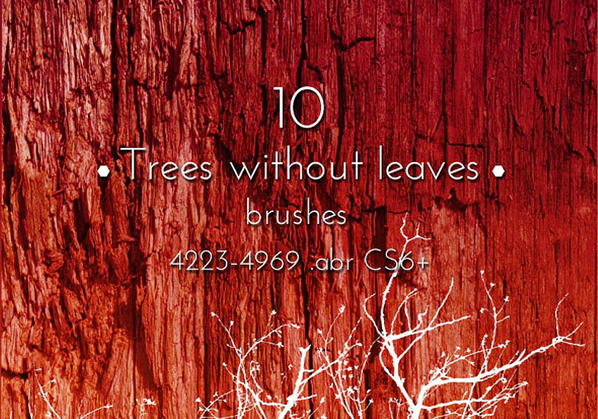 Tree Brushes Photoshop Collection