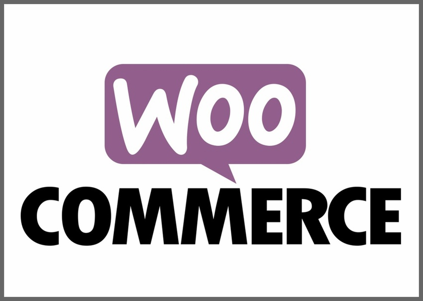 All About WooCommerce Plugins: How They Can Make Your Store Successful